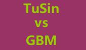 最强SOLO王6进4循环赛:TuSin vs GBM