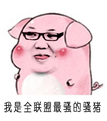 最好看的猪的表情_我是全联盟最骚的骚猪PDD鬼畜表情包_LOL视