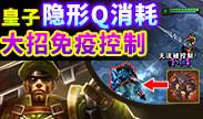 世界第一:皇子隐形Q消耗 大招免疫控制技巧!