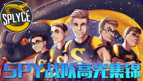 巅峰Top5:小组赛B组第二SPY高光时刻-ADCARRY